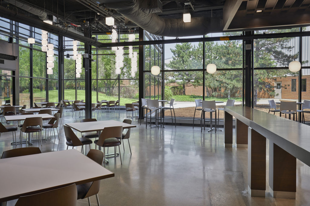 Corporate Cafeteria Renovation - 9